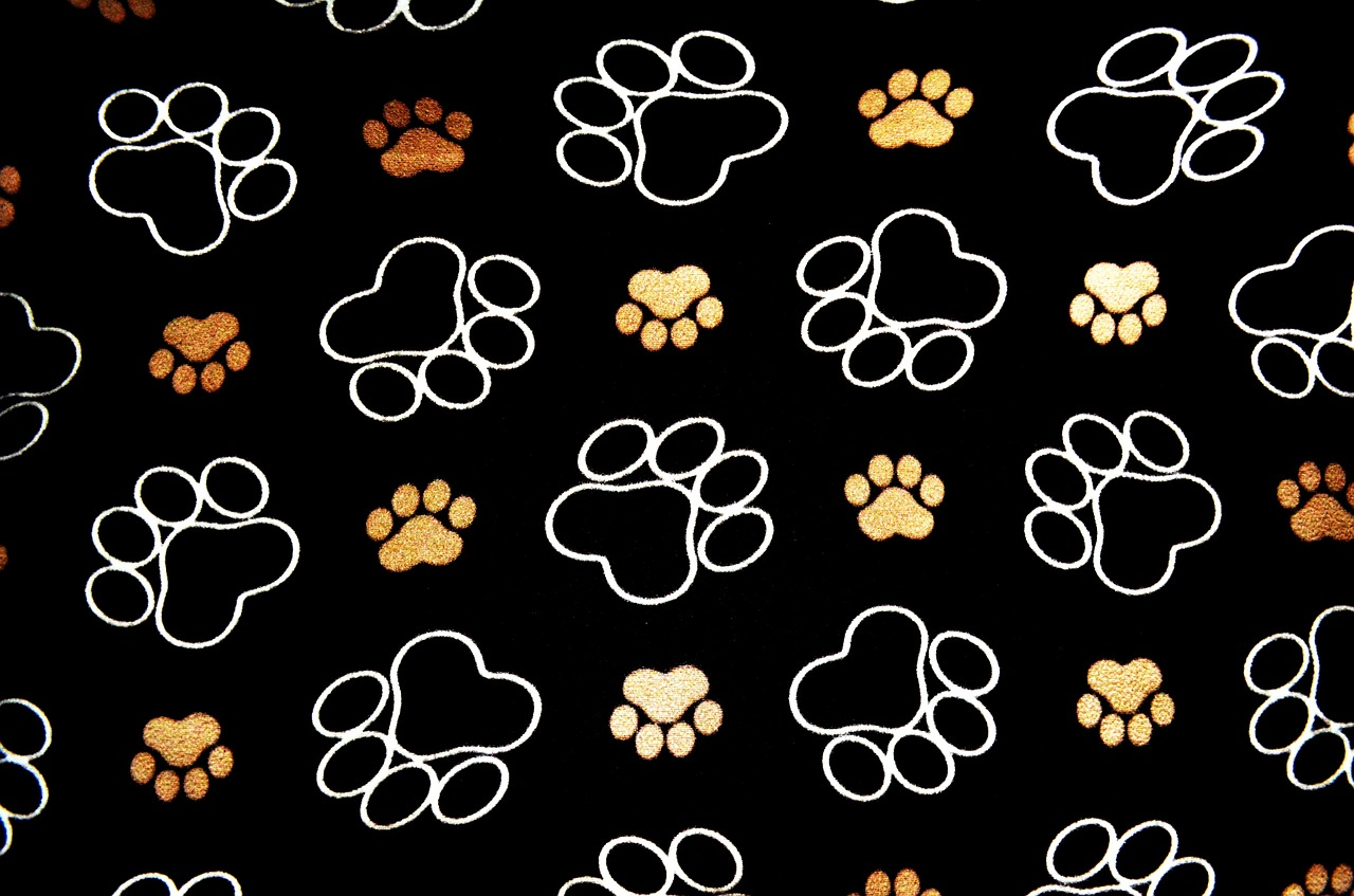 dog-19812_1280
